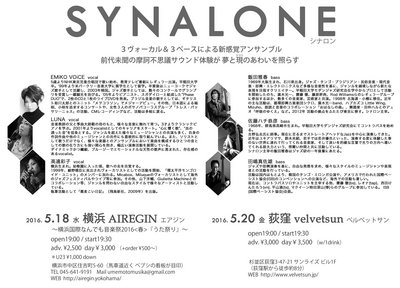 +201605SYNALONE_Flyer_Back.jpg